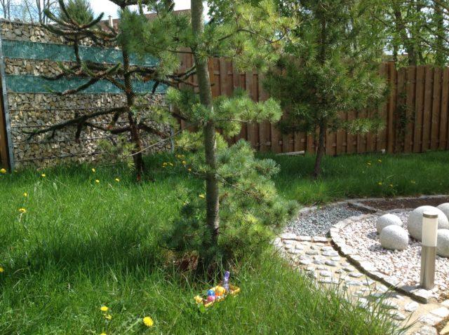 Ostern im Saunagarten
